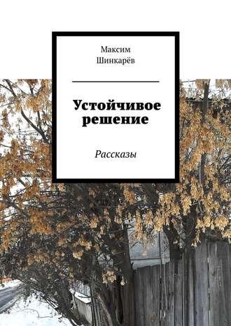 Максим Шинкарёв, Устойчивое решение