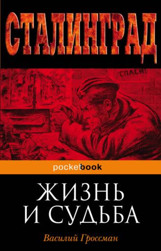Василий Гроссман, Жизнь и судьба