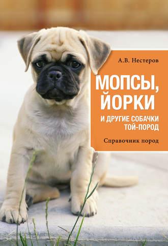 Арсений Нестеров, Мопсы, йорки и другие собачки той-пород