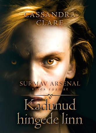 Cassandra Clare, Kadunud hingede linn. Surmav arsenal. V raamat