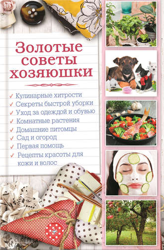 Наталья Сластенова, Золотые советы хозяюшки