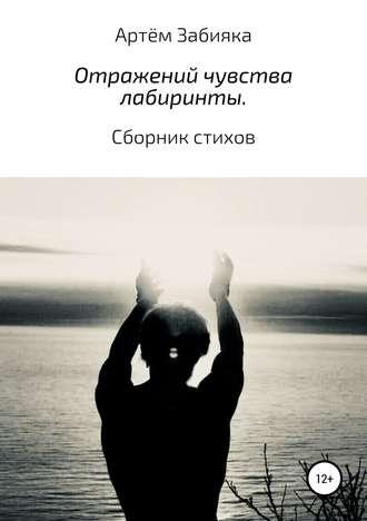 Артём Забияка, Отражений чувства лабиринты. Сборник стихов