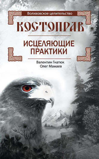 Валентин Гнатюк, Олег Мамаев, Костоправ. Исцеляющие практики