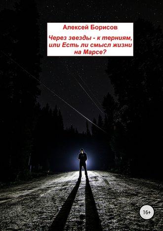 Алексей Борисов, Через звезды – к терниям, или Есть ли смысл жизни на Марсе?