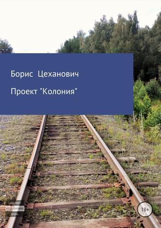 Борис Цеханович, Проект «Колония»