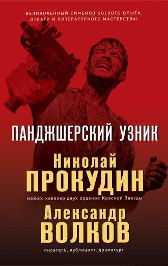 Николай Прокудин, Александр Волков, Панджшерский узник