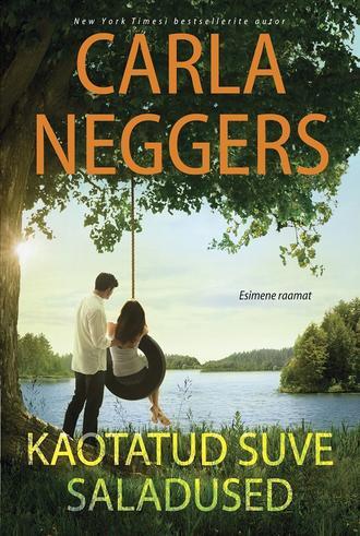 Carla Neggers, Kaotatud suve saladused