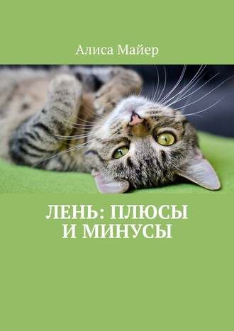 Алиса Майер, Лень: плюсы и минусы