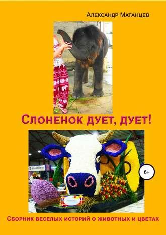 Александр Матанцев, Слоненок дует, дует!