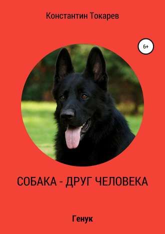 Константин Токарев, Собака – друг человека