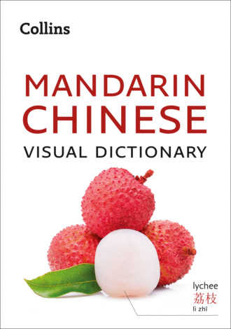 Collins Dictionaries, Collins Mandarin Chinese Visual Dictionary