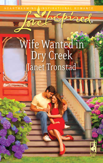 Janet Tronstad, Wife Wanted in Dry Creek