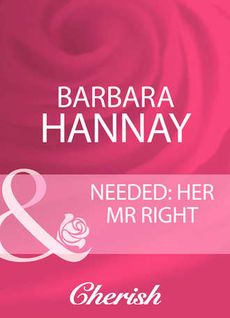 Barbara Hannay, Needed: Her Mr Right