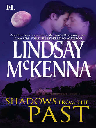 Lindsay McKenna, Shadows from the Past