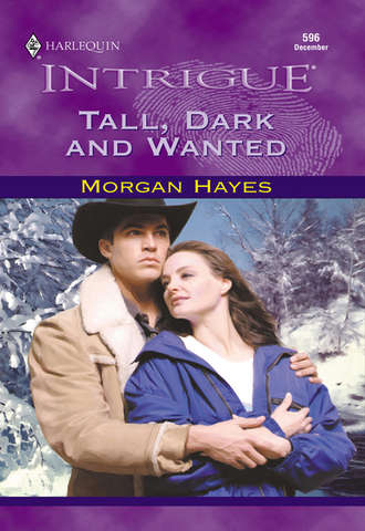 Morgan Hayes, Tall, Dark And Wanted