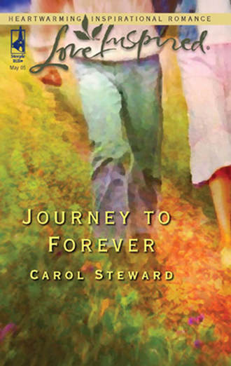 Carol Steward, Journey To Forever