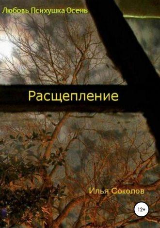 Илья Соколов, Расщепление