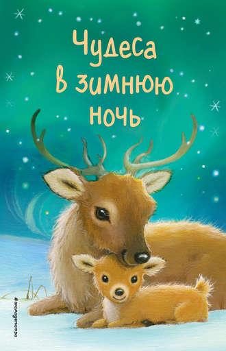 Холли Вебб, Джулия Грин, Чудеса в зимнюю ночь