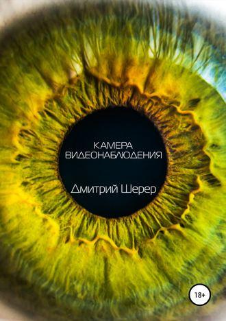 Дмитрий Шерер, Камера видеонаблюдения