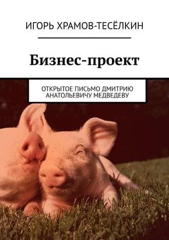 Игорь Храмов-Тесёлкин, Бизнес-проект. Открытое письмо Дмитрию Анатольевичу Медведеву