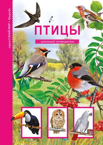 Юлия Дунаева, Птицы