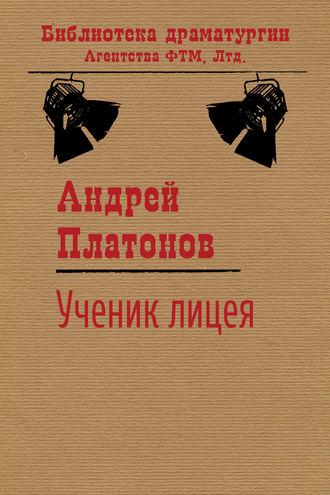 Андрей Платонов, Ученик лицея