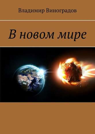 Владимир Виноградов, В новом мире