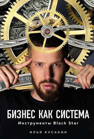 Илья Кусакин, Бизнес как система