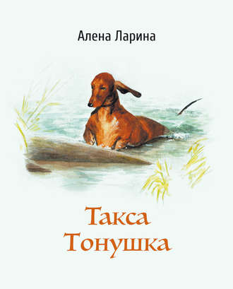 Алёна Ларина, Такса Тонушка