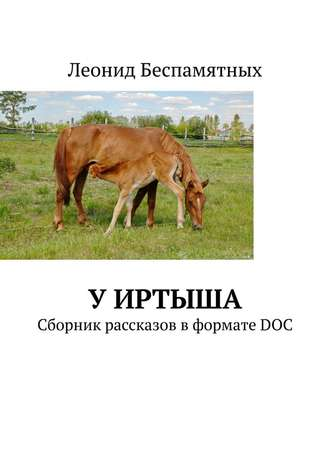 Леонид Беспамятных, УИртыша. Сборник рассказов в формате DOC