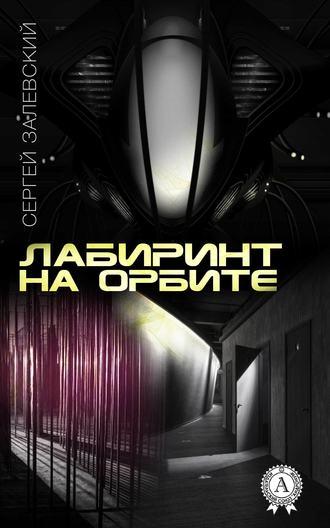 Сергей Залевский, Лабиринт на орбите