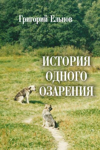 Григорий Ельцов, История одного озарения
