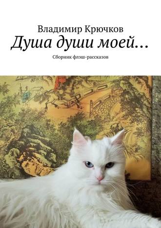 Владимир Крючков, Душа души моей… Сборник флэш-рассказов