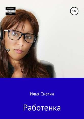 Илья Снегин, Работенка