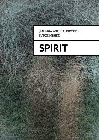 Данила Пархоменко, Spirit