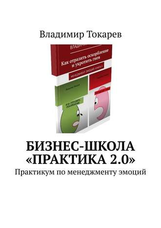 Владимир Токарев, Бизнес-школа «Практика2.0». Практикум по менеджменту эмоций