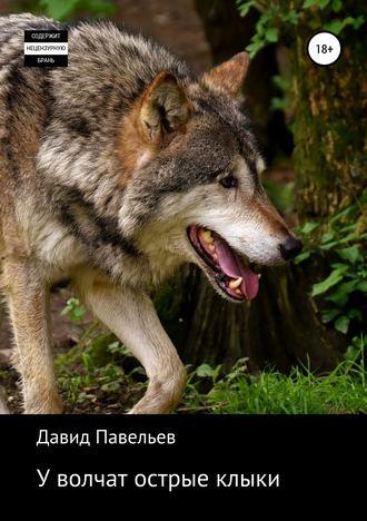 Давид Павельев, У волчат острые клыки