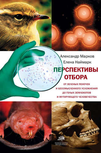 Александр Марков, Елена Наймарк, Перспективы отбора