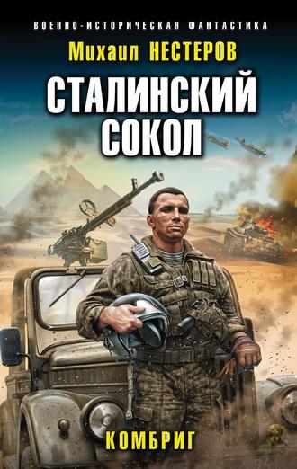 Михаил Нестеров, Сталинский сокол. Комбриг