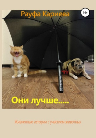 Рауфа Кариева, Меньшие