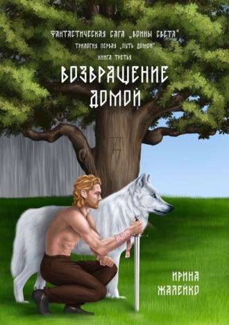 Ирина Жалейко, Возвращение домой. Книга третья. Фантастическая сага «Воины света». Трилогия первая «Путь домой»