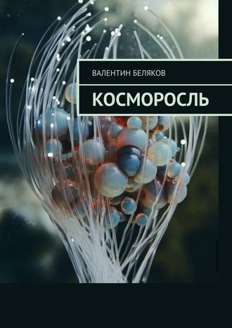 Валентин Беляков, Косморосль