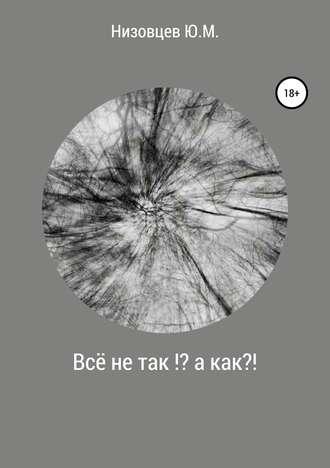 Юрий Низовцев, Всё не так?! А как?!