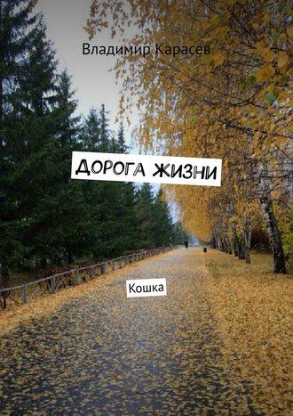 Владимир Карасев, Дорога жизни. Кошка