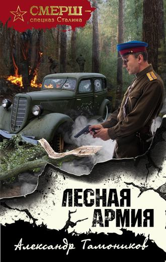 Александр Тамоников, Лесная армия