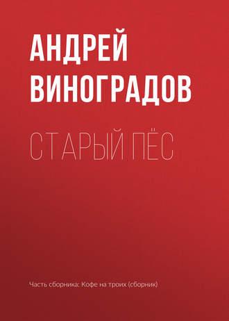 Андрей Виноградов, Старый пёс