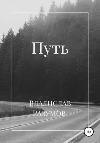 Владислав Разумов, Путь