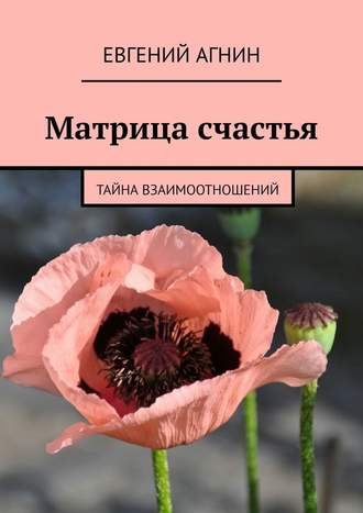 Евгений Агнин, Двое налестницеРа. Матрица счастья
