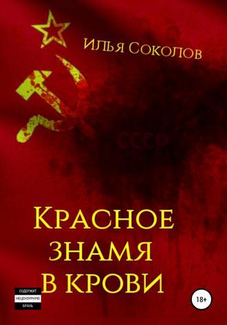 Илья Соколов, Красное знамя в крови