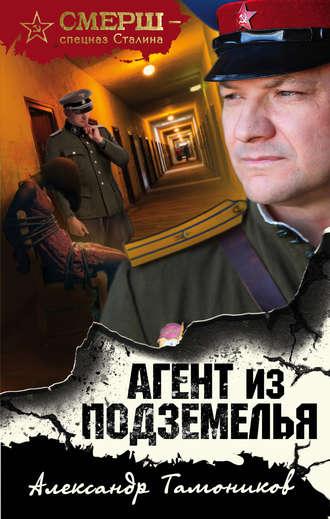 Александр Тамоников, Агент из подземелья